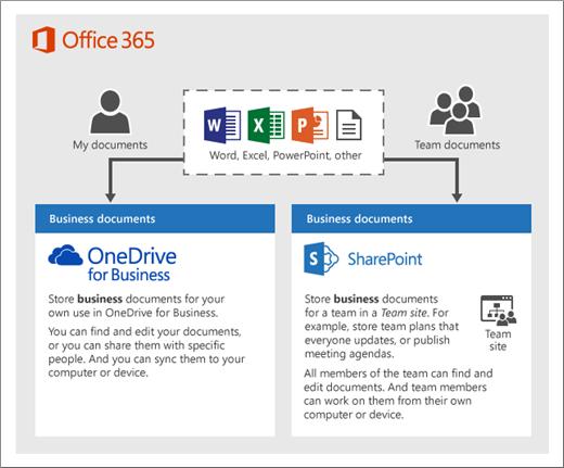 Einrichten Der Speicherung Und Freigabe Von Dateien In Office 365