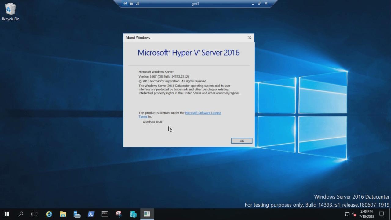 Microsoft Hyper-V Server 2016.
