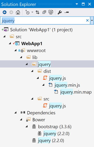 jquery assets shown in the Solution Explorer search results