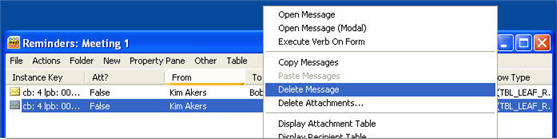 A screen shot of appointment, showing the Delete Message