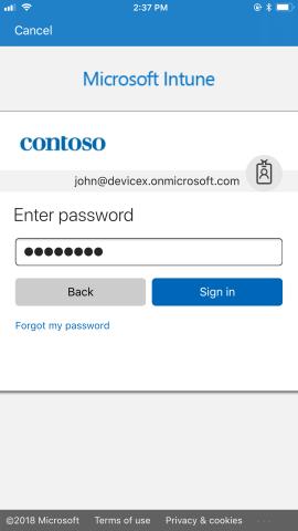 Azure AD password prompt.