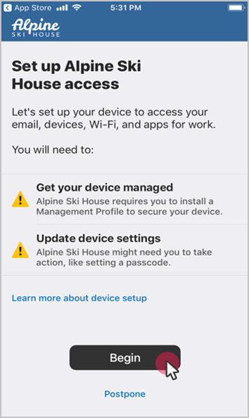 Set up iOS device access to your company resources