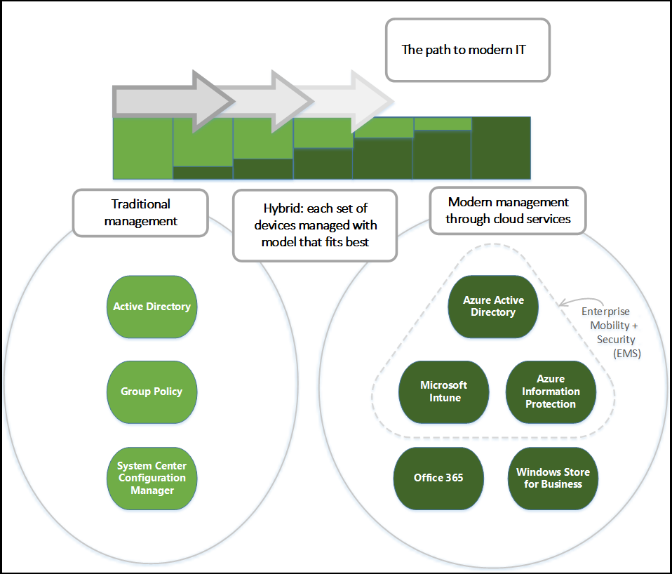 Diagram of Modern Management Options