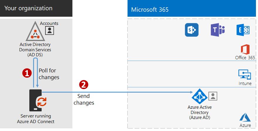 Step 3: Configure hybrid identity | Microsoft Docs