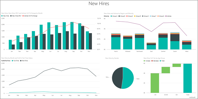 The Human Resources Sample Report Opens To The New Hires Page.