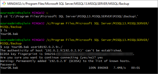 Migrate a SQL Server database from Windows to Linux - SQL