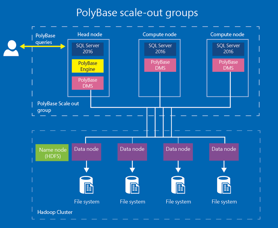 PolyBase scale-out groups - SQL Server   Microsoft Docs