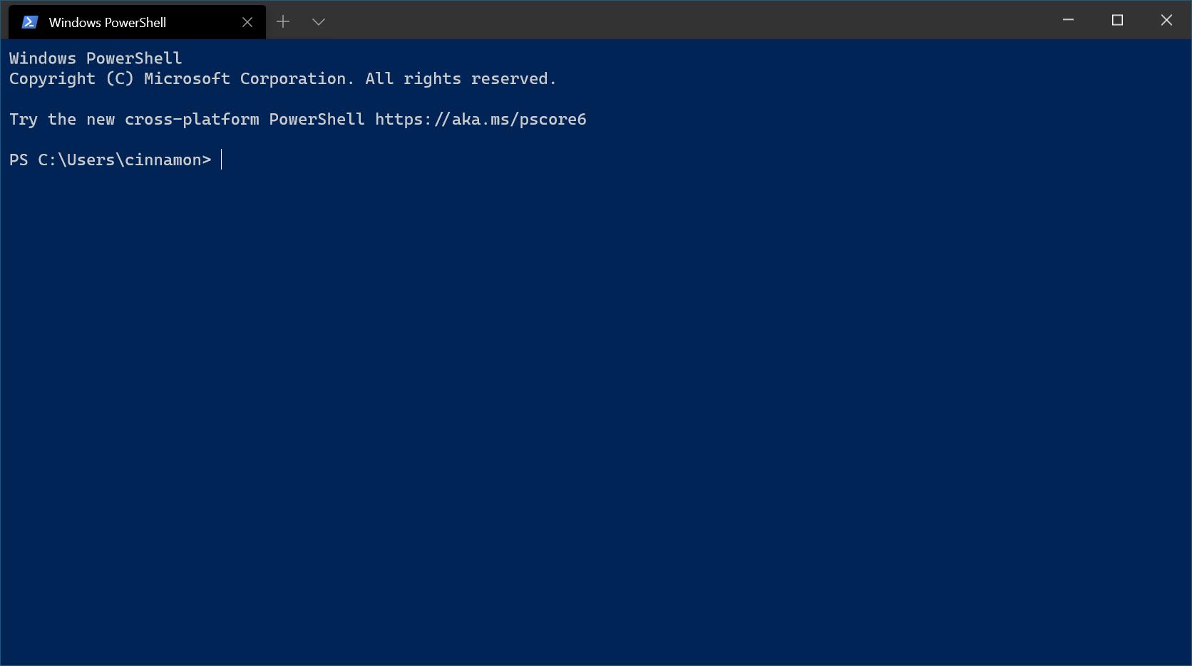 Windows Terminal first run