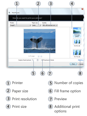 Photo Printing Wizard - Windows applications | Microsoft Docs