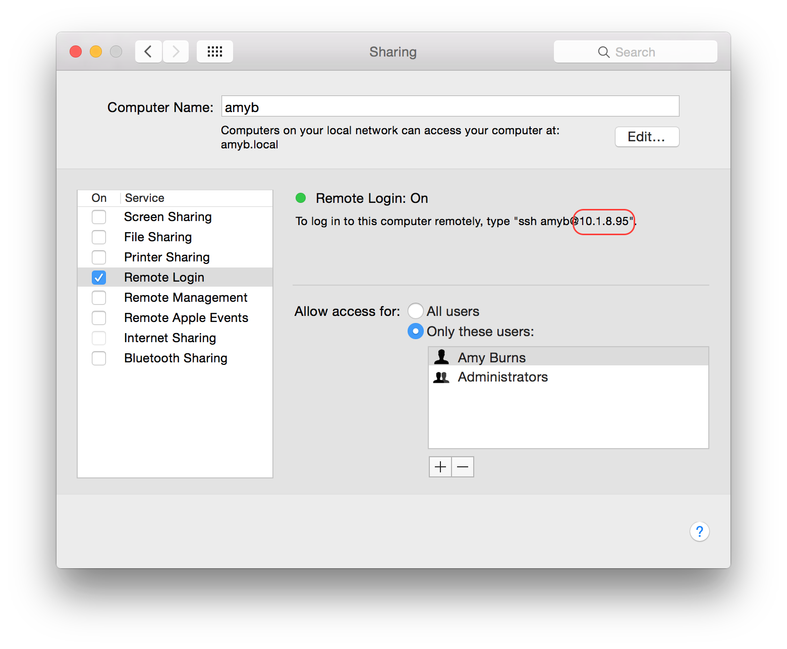 The IP address in the System Preferences app