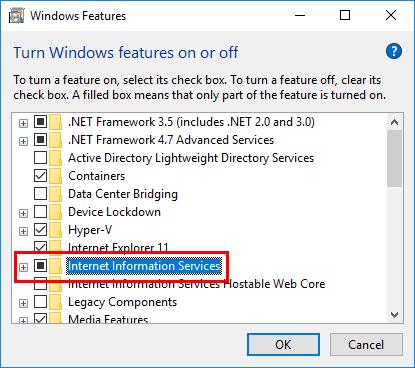 인터넷 정보 서비스 확인란이 검은 사각형(확인 표시 아님)으로 표시되어 있고 IIS 기능 중 일부가 활성화되었음을 보여주는 Windows 기능