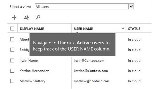 Microsoft 365 yönetim merkezindeki kullanıcı adı sütunu
